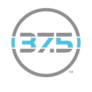 thirtyseven and a half logotype