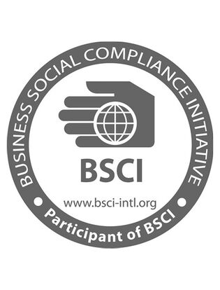 logo bsci system