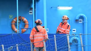 VG Shipping Oy - Leijona työvaatteet